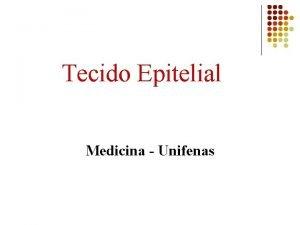 Tecido Epitelial Medicina Unifenas Tecidos estrutura geral Clula
