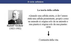 Il ciclo cellulare La teoria della cellula Rudolf