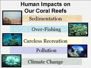Human Impacts on Our Coral Reefs Sedimentation OverFishing