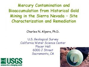 Mercury Contamination and Bioaccumulation from Historical Gold Mining