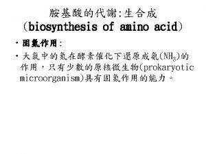 nitrogen cycle transamination reaction amino acid amino group