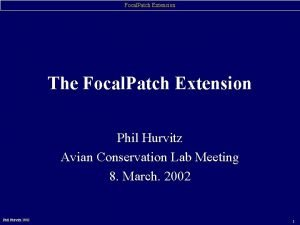 Focal Patch Extension The Focal Patch Extension Phil
