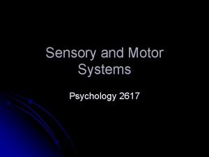 Sensory and Motor Systems Psychology 2617 Introduction The