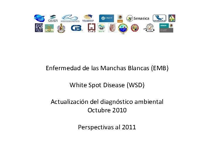 Enfermedad de las Manchas Blancas EMB White Spot