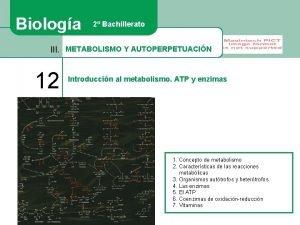 Biologa 2 Bachillerato III METABOLISMO Y AUTOPERPETUACIN 12