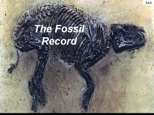 The Fossil Record FOSSIL is a remnant impression