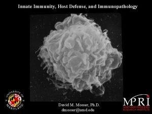 Innate Immunity Host Defense and Immunopathology David M