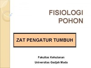 FISIOLOGI POHON ZAT PENGATUR TUMBUH Fakultas Kehutanan Universitas
