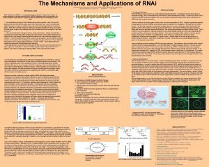 The Mechanisms and Applications of RNAi Gwendolyn Bishop