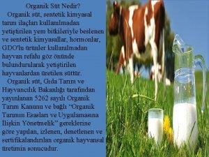 Organik St Nedir Organik st sentetik kimyasal tarm