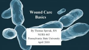 Wound Care Basics Wound Care Overview Layers of