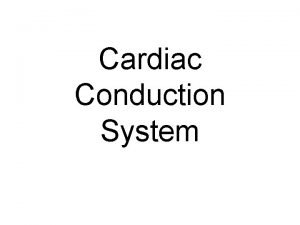 Cardiac Conduction System 1 Conduction System of Heart