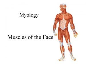 Myology Muscles of the Face Muscles of Facial