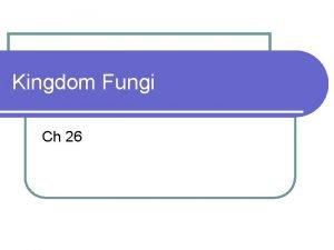 Kingdom Fungi Ch 26 ProsCons of Fungi l