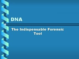 DNA The Indispensable Forensic Tool DNA Review DNA