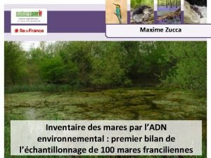 Maxime Zucca Inventaire des mares par lADN environnemental