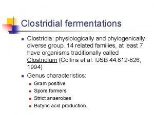 Clostridial fermentations n n Clostridia physiologically and phylogenically