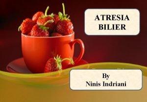 ATRESIA BILIER By Ninis Indriani PENDAHULUAN Penyebab kolestasis