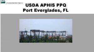 USDA APHIS PPQ Port Everglades FL USDA APHIS
