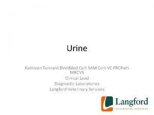 Urine Kathleen Tennant BVet Med Cert SAM Cert