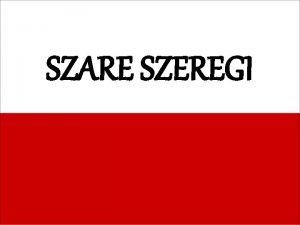 SZARE SZEREGI Leopold Tadeusz Brzyski Osa Leopold Tadeusz
