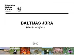 BALTIJAS JRA Prmslot jra 2010 Baltijas jra Baltijas