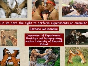 Do we have the right to perform experiments