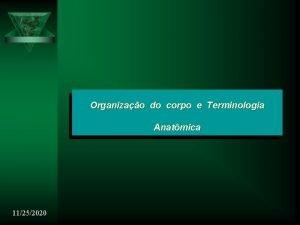 Organizao do corpo e Terminologia Anatmica 11252020 Organizao