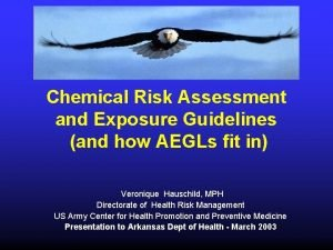 Chemical Risk Assessment and Exposure Guidelines and how