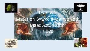 Thema 1 Materion Bywyd a Marwolaeth Maes Astudiaeth