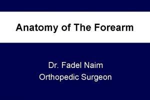 Anatomy of The Forearm Dr Fadel Naim Orthopedic