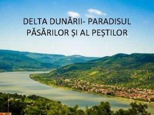 DELTA DUNRII PARADISUL PSRILOR I AL PETILOR Delta