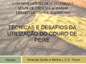 UNIVERSIDADE FEDERAL DO PARAN SETOR DE CINCIAS AGRRIAS