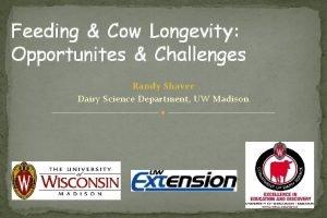 Feeding Cow Longevity Opportunites Challenges Randy Shaver Dairy