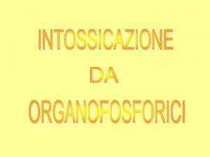 ORGANOFOSFORICI MECCANISMO DI AZIONE Sono agenti COLINOMIMETICI ad