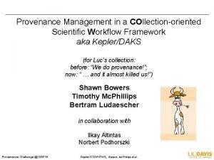 Provenance Management in a COllectionoriented Scientific Workflow Framework