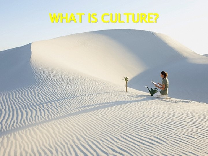 WHAT IS CULTURE Most commonly used in 3