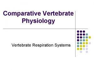 Comparative Vertebrate Physiology Vertebrate Respiration Systems Respiration systems