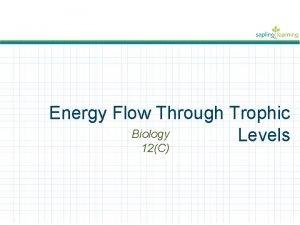 Energy Flow Through Trophic Biology Levels 12C Energy