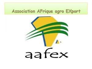 Association AFrique agro EXport ASSOCIATION AFRIQUE AGRO EXPORT