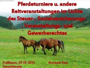 Pferdeturniere u andere Reitveranstaltungen im Lichte des Steuer