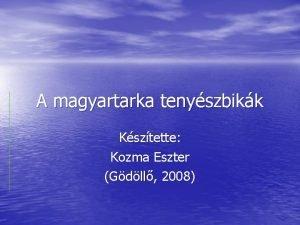 A magyartarka tenyszbikk Ksztette Kozma Eszter Gdll 2008
