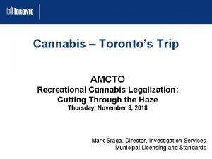Cannabis Torontos Trip AMCTO Recreational Cannabis Legalization Cutting