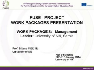 FUSE PROJECT WORK PACKAGES PRESENTATION WORK PACKAGE 8