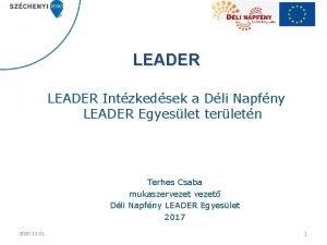 LEADER Intzkedsek a Dli Napfny LEADER Egyeslet terletn