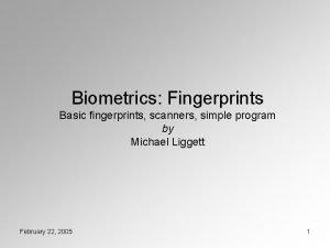 Biometrics Fingerprints Basic fingerprints scanners simple program by