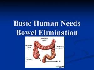 Basic Human Needs Bowel Elimination Bowel Elimination GI