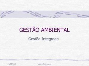 GESTO AMBIENTAL Gesto Integrada 29112020 www nilson pro