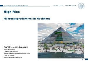 Innovative Landwirtschaft fr die Zukunft High Rice Nahrungsproduktion