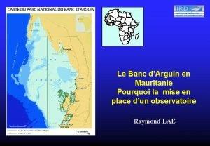 Le Banc dArguin en Mauritanie Pourquoi la mise